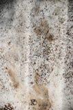 bakgrund cracked grungestenen Arkivfoto