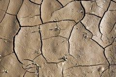 bakgrund cracked jord Royaltyfria Foton