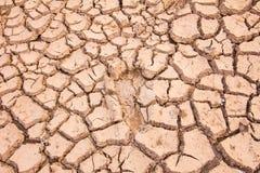 bakgrund cracked jord Royaltyfri Bild