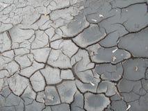 bakgrund cracked jord sprucken mudmodell Royaltyfri Fotografi