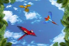 bakgrund 3d, palmträd och papegojor stock illustrationer