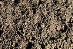 Bakgrund eller textur av jord i lantligt Svart jord, mylla Arkivfoton