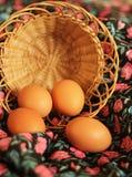 bakgrund färgade vektorn för tulpan för formatet för easter ägg eps8 den röda Ägg i korgen Fotografering för Bildbyråer