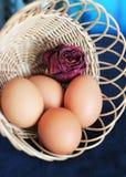 bakgrund färgade vektorn för tulpan för formatet för easter ägg eps8 den röda Ägg i korgen Royaltyfria Foton