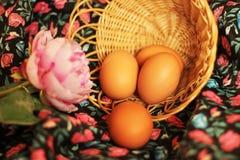 bakgrund färgade vektorn för tulpan för formatet för easter ägg eps8 den röda ägg och pion Royaltyfri Fotografi