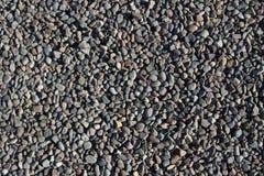 bakgrund föder upp den steniga stenstrukturen för rocken Royaltyfria Foton
