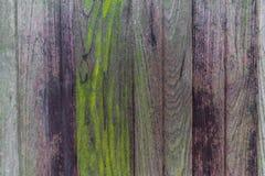 Bakgrund för Abstarct mörk wood texturantikvitet Royaltyfri Bild