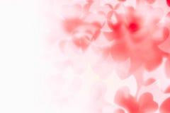 Bakgrund för abstrakt begrepp för dag för valentin` s av mjuka röda vita bokehsuddighetshjärtor Royaltyfri Bild