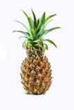 Bakgrund för ananasisolatvit Arkivbilder