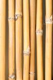 Bakgrund för bambuväggtextur Royaltyfri Bild