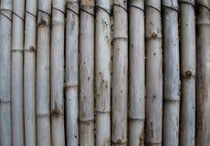 Bakgrund för bambuväggtextur Royaltyfria Bilder