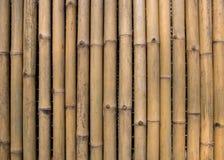 Bakgrund för bambuväggtextur Arkivbild