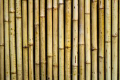 Bakgrund för bambuväggtextur , nära övre Arkivfoton