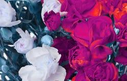 Bakgrund för blommanejlikabukett Arkivbild