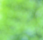Bakgrund för Bokeh naturabstrakt begrepp Fotografering för Bildbyråer