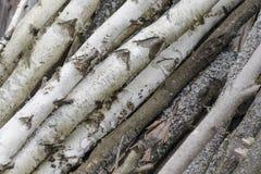 Bakgrund för buntträtimmer Högen av trä loggar lagring Sågar klippte träjournaler arkivfoton