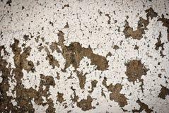 Bakgrund för cementväggtextur royaltyfri bild