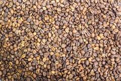 Bakgrund för closeup för kaffebönor Royaltyfri Fotografi