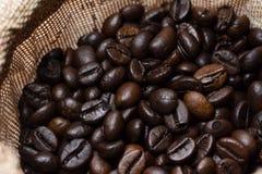 Bakgrund för closeup för kaffebreansmodell royaltyfria bilder