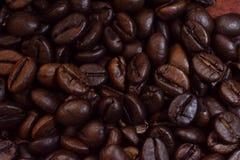 Bakgrund för closeup för kaffebreansmodell arkivfoto