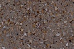Bakgrund för Closeupsandtextur med fina korn och havsskal Royaltyfria Bilder