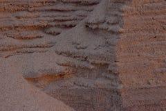 Bakgrund för Closeupsandtextur med fina korn och havsskal Royaltyfri Foto