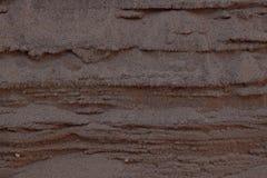 Bakgrund för Closeupsandtextur med fina korn och havsskal Royaltyfri Fotografi