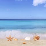 Bakgrund för den sandiga stranden i sommarsemester semestrar med havet och Arkivfoto