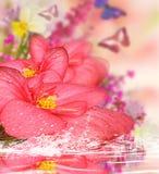 Bakgrund för design med blommor, reflekterad i vatten och fjärilar på bakgrunden Arkivfoto