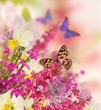 Bakgrund för designen med blommor, härlig bukett av blommor med en fjäril Arkivfoto