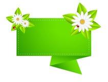 Bakgrund för en design med härliga blommor Royaltyfri Fotografi