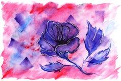 Bakgrund för förälskelse för violett karmosinröd blomma för vattenfärg rosa romantisk Fotografering för Bildbyråer