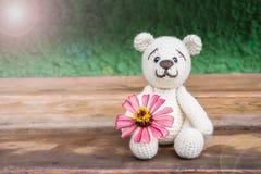 bakgrund för för amigurumidockabjörn och blomma/virkningnallebjörn Royaltyfri Bild