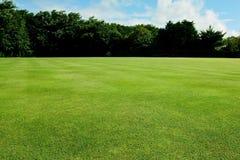 Bakgrund för fritids- eller sportfält Arkivbild