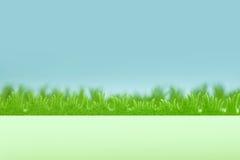 Bakgrund för grönt gräs med blå himmel Royaltyfria Foton