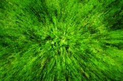 Bakgrund för grönt gräs med pressar ut effekt Arkivbilder