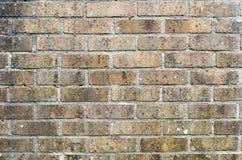 Bakgrund för Grunge för tegelstenvägg inget som är horisontal Arkivbild
