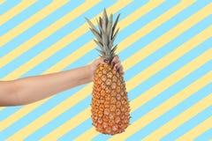 Bakgrund för hållande ananas för kvinnahand en färgrik royaltyfria bilder