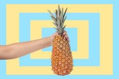 Bakgrund för hållande ananas för kvinnahand en färgrik royaltyfri foto