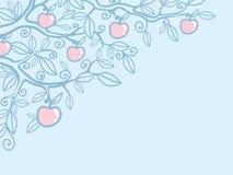 Bakgrund för hörn för Apple träd Arkivfoton