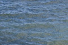 Bakgrund för havsvatten Arkivbild