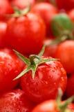 Bakgrund för körsbärsröda tomater Arkivbilder