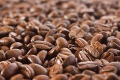 Bakgrund för kaffeböna Royaltyfri Fotografi