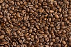 Bakgrund för kaffebönor Arkivfoto