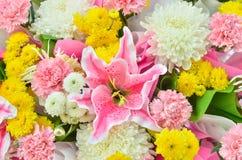 Bakgrund för konstgjorda blommor Arkivfoton