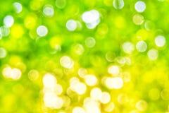 Bakgrund för ljus för Abstact defocusbokeh som göras av skogstil Arkivbild