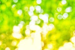Bakgrund för ljus för Abstact defocusbokeh som göras av skogstil Royaltyfria Foton
