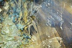 Bakgrund för mörk brunt för abstrakt organisk guld- målarfärg orange vit hypnotisk Royaltyfri Fotografi