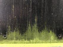 Bakgrund 04 för mörkt trä och för grön form arkivbild
