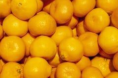 Bakgrund för marknad för mandarinapelsiner Royaltyfri Fotografi
